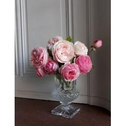 Vase Cristal Saint Louis...